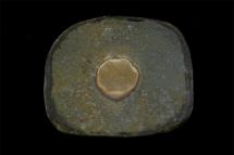 Platte - 2006 - 29x24cm